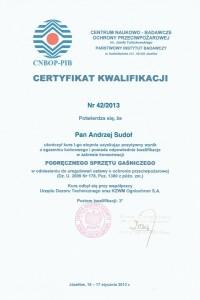 certyfikat-sikap-08