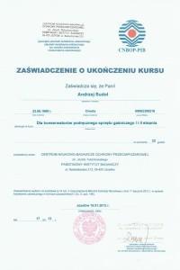 certyfikat-sikap-10