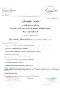 certyfikat-sikap-13