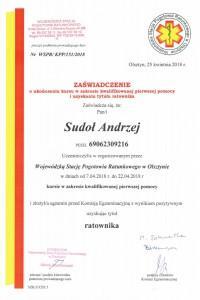certyfikat-sikap-37